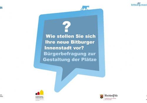 Bürgerbefragung 2017